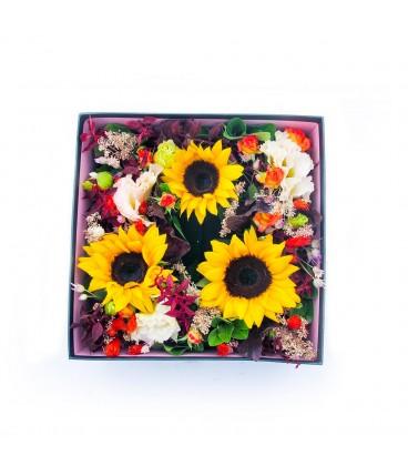 باکس گل آفتاب