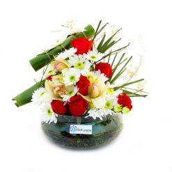تنگ گل هُمای